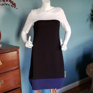 White House Black Market Color Block Dress Size 8